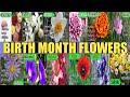 Lucky BIRTH MONTH FLOWERS | Ano Ang Kanilang Simbolo At Kahulugan