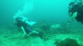 scuba Sapi Island, Borneo