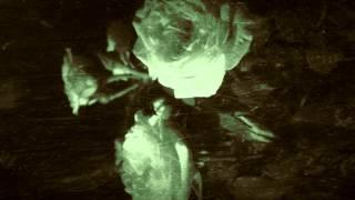 Zr19.84 - A Sudden Death