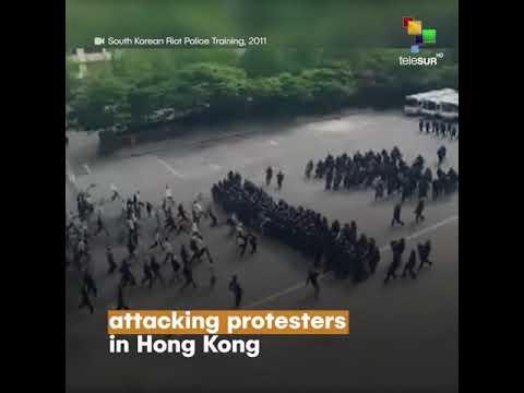 Hong Kong Fake News