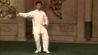 陈式太极拳老架一路74式(音乐口令)陈正雷表演