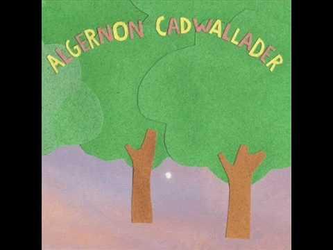Algernon Cadwallader - Motivational Song
