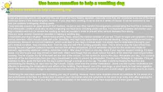 How to : Use home remedies to help a vomiting dog