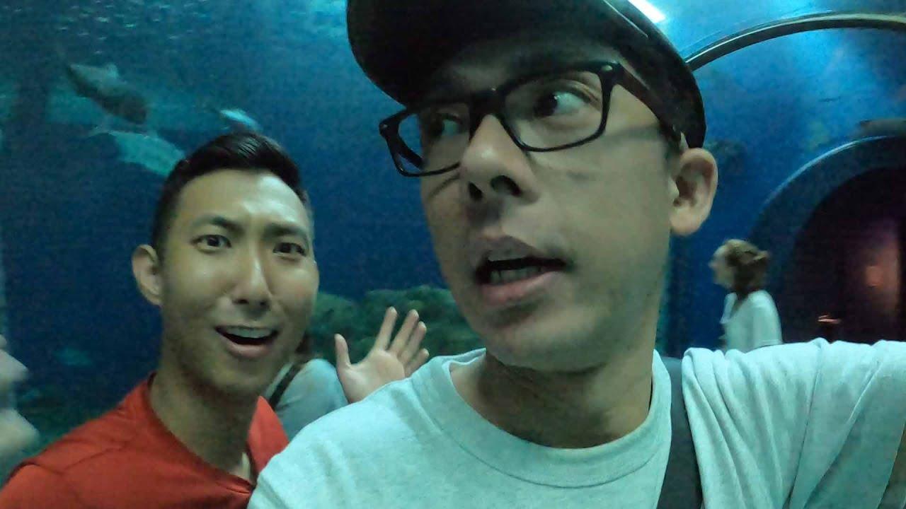 最後一個行程! 跟大家一起逛澎湖水族館【阿滴日常】