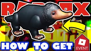 [EVENT] How To Get the Niffler Companion Roblox 2018 Halloween Event - Escape Room Haunted House