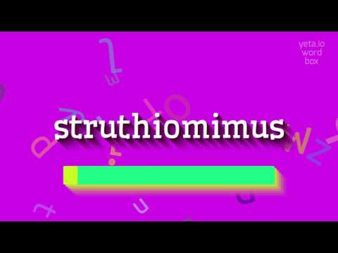 "How to say ""struthiomimus""! (High Quality Voices)"