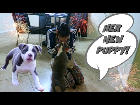 Surprising Girlfriend With A Puppy