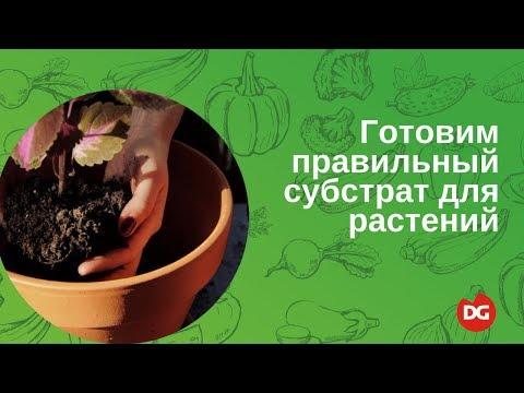 №7 Как приготовить правильный субстрат для растений