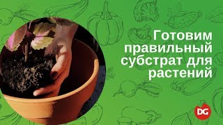 №7 Как приготовить правильный субстрат для растений(, 2014-06-02T05:44:54.000Z)