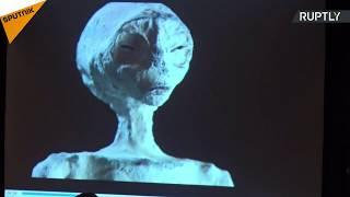 فيديو لعلماء يوثّقون العثور على مومياء