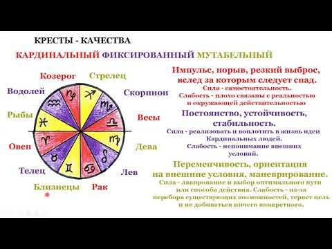 Знаки зодиака Часть 1 Синтетический знак