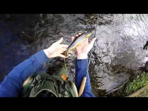 Early Season Fly Fishing In North Wales, March 2017