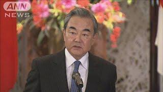 中国・王毅外相 新型肺炎の「感染は抑制可能」(20/01/29)