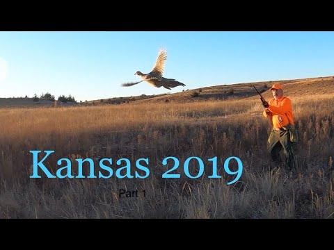 Kansas Quail & Pheasant 2019