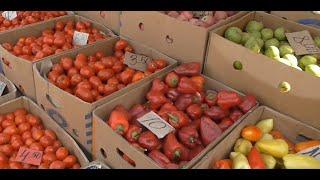 ВЛОГ Оптовый рынок осенью. Обзор покупок  Наш осенний огородик(, 2015-09-23T18:51:53.000Z)