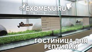 Гостиница для экзотических животных EXOMENU