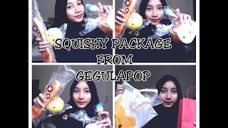 Squishy Package From Gegulapop By Suki Kakoii