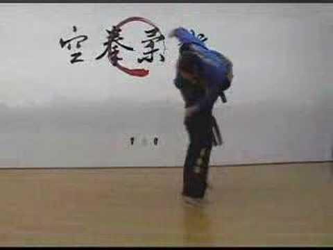 Hyeong Advanced Forms of Gongkwon Yusul