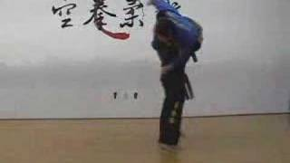 Hyeong Advanced Forms of Gongkwon Yusul