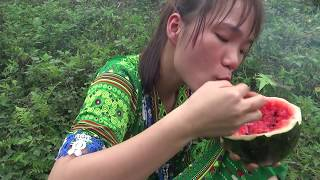 Survival skills: Catching fish at the stream and cooking fish for Eating delicious