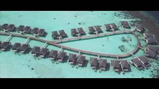 4K // Amari Havodda Maldives // Drone