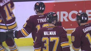 Game Highlights Dec. 30 Chicago Wolves vs. Rockford IceHogs