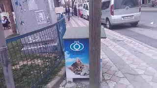 Tesekkürler Sultangazi Belediyesi. 🤗