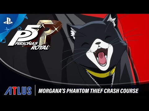 Persona 5 Royal – Morgana's Phantom Thief Crash Course   PlayStation 4