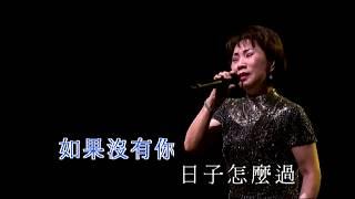 潘秀瓊 - 如果沒有你 (呂珊閃耀07演唱會)
