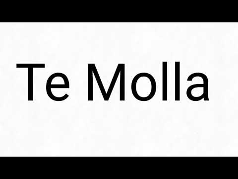 Ta Molla (meme?) Не полностью Саша Абрикосов & Аленка