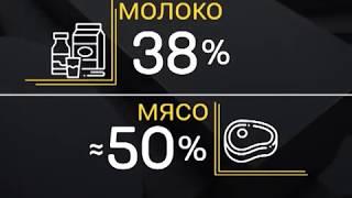 Чаще всего в Красноярске подделывают молоко и колбасу