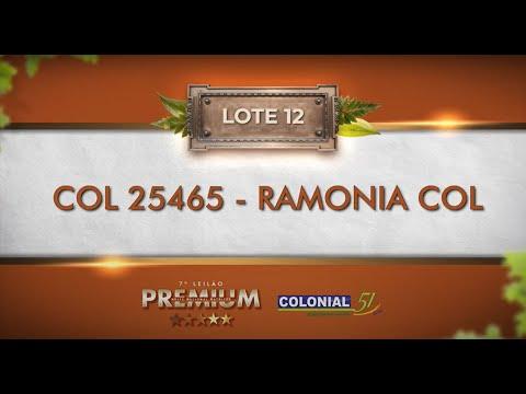 LOTE 12   COL 25465