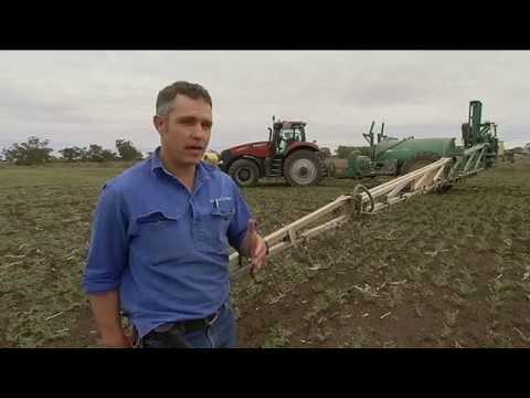 Native vegetation debate - ABC 7PM News NSW - 17/07