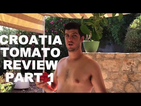 Croatia Tomato Review With TPG - The Green Life With TPG - Episode 66