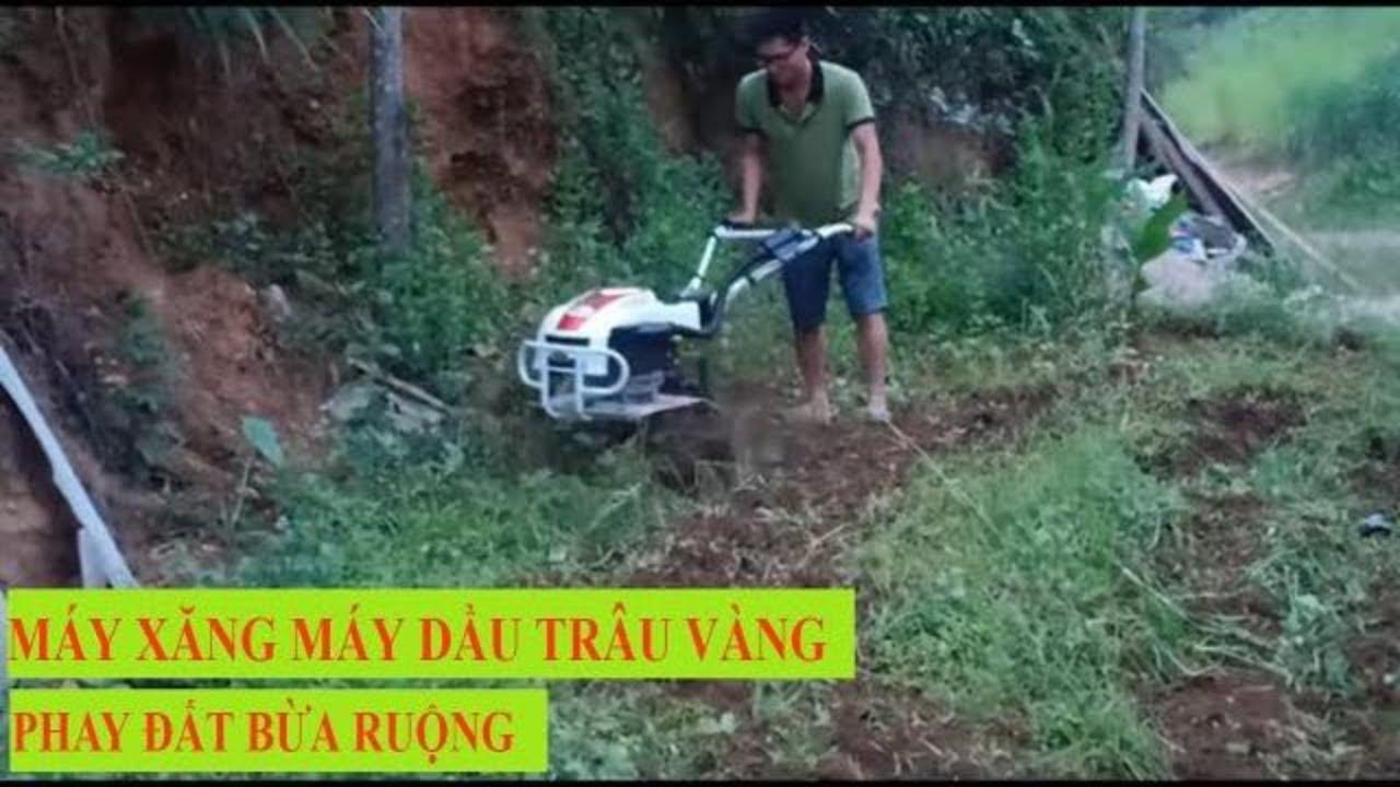 Máy xăng máy dầu trâu vàng phay đất bừa ruộng lh: 0971588456
