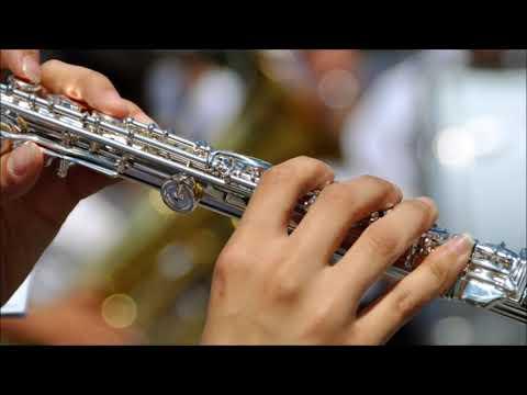 Happy Flute Ringtone | Ringtones for Android | Instrumental Ringtones