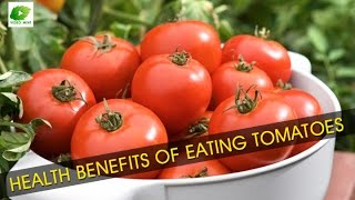 Health Benefits of Eating Tomatoes | Best Food Tip | Educational Videos
