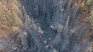 Surveying the fury: drones count the costs of 2017 B.C. wildfires thumbnail