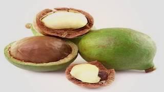 Обзор ореха макадамия | Review of macadamia nut