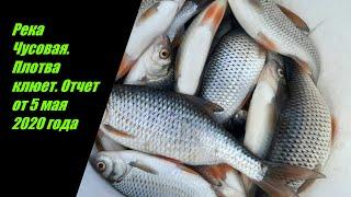 Рыбалка на реке Чусовая Первоуральск Отчет от 5 мая 2020 года