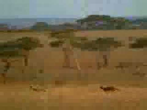 Un ladron salvadoreño en Africa