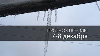 Прогноз погоды на 7 и 8 декабря