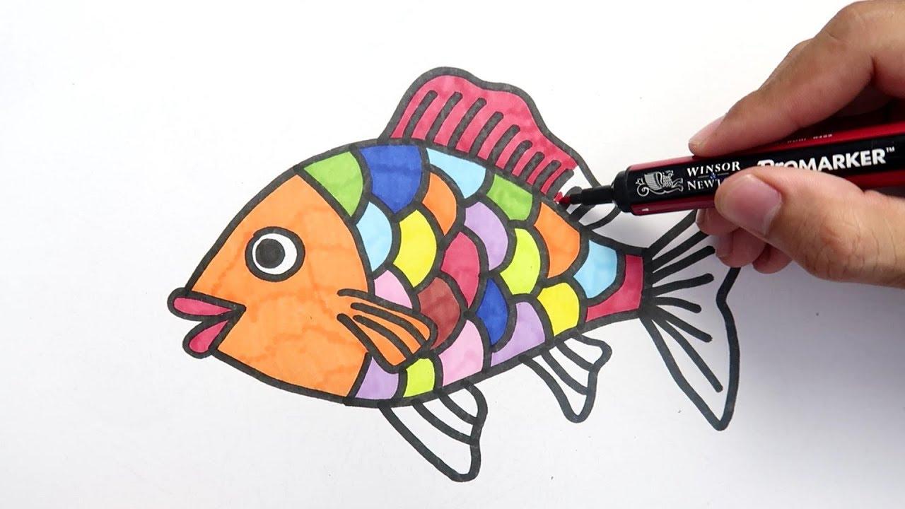 Cara Menggambar Dan Mewarnai Ikan Mas Hias
