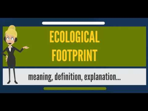 What is ECOLOGICAL FOOTPRINT? What does ECOLOGICAL FOOTPRINT mean? ECOLOGICAL FOOTPRINT meaning