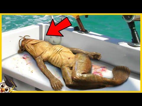 10 Angstaanjagende Dingen Gevonden In De Oceaan
