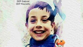 Girasoles 🌻 para ti GABRIEL CRUZ 🐟 🐟