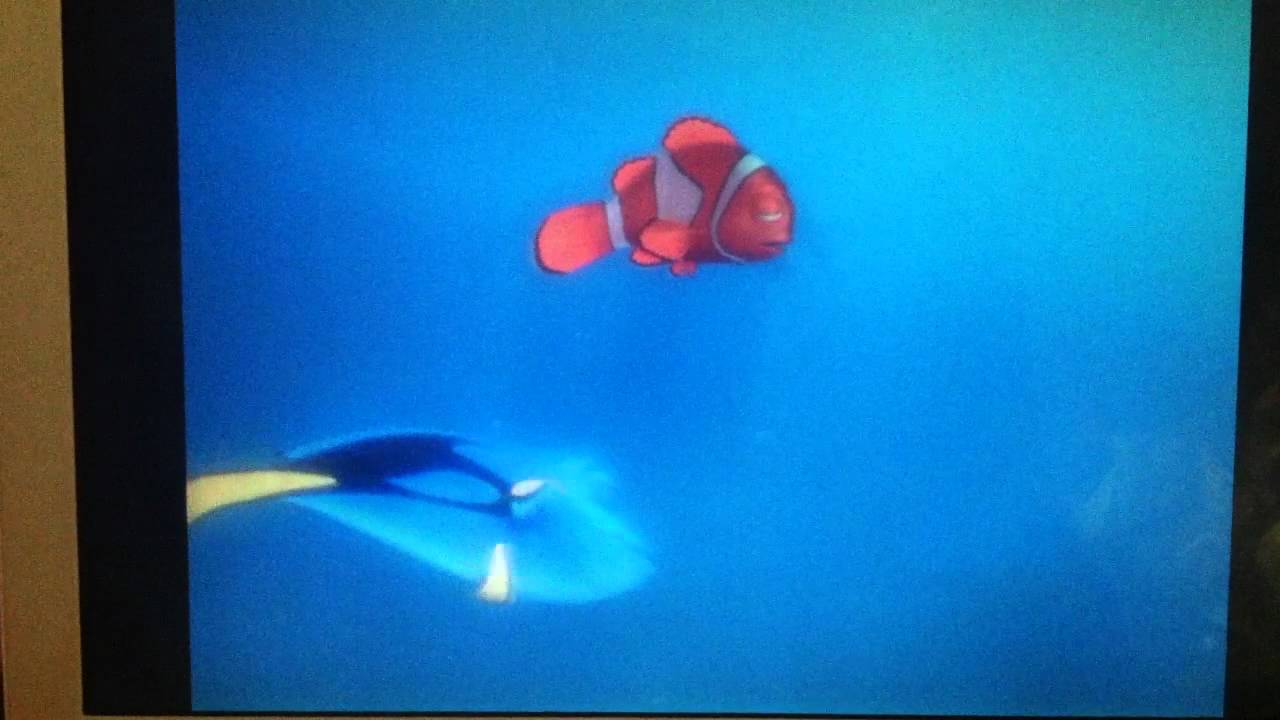 stay awake finding nemo