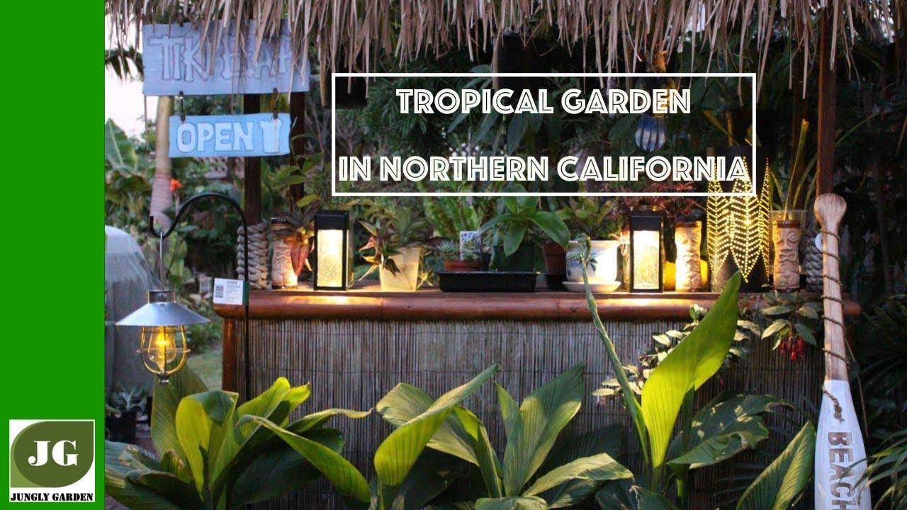 Tropical Garden In Northern California