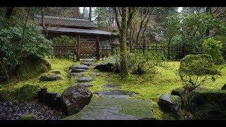 Японская Музыка  Для Отдыха.  Japanese music for relaxation and sleep