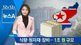 식량·원자재·장비…대북 차관 '1조 원' 규모 | 뉴스A
